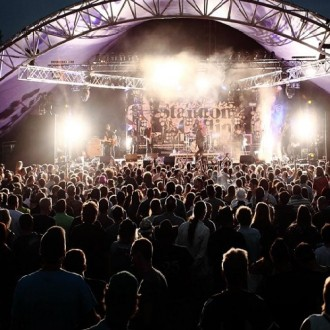 C/T Review: Standon Calling 2014